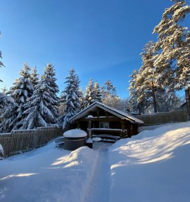 Cottages in Chernichnoe - фото 22