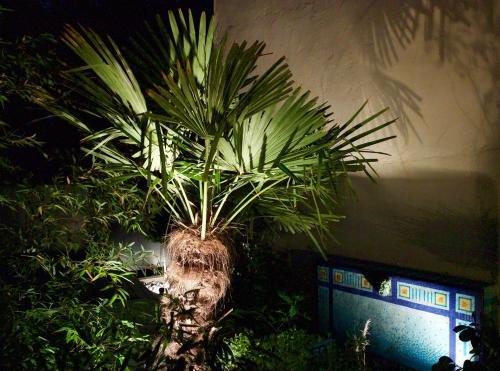 Villa du Square, Luxury Guest House - фото 21