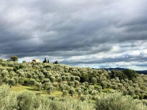 Settignano Tuscany Homes - фото 15