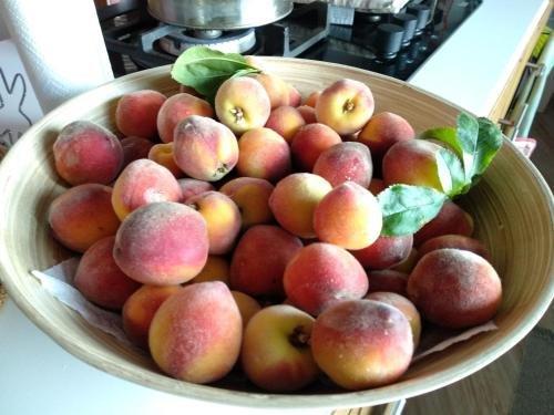 Casa Regina Tenerife - фото 21