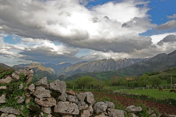 El Patin de Monchu - фото 9