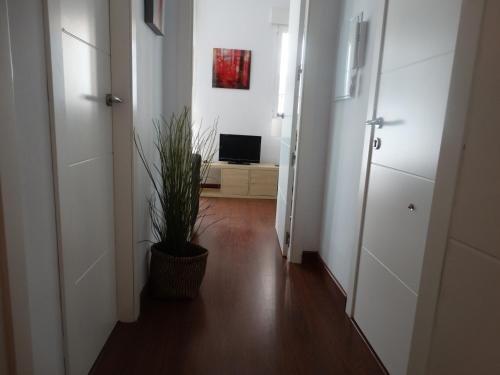 Malaga Apartamentos - фото 19