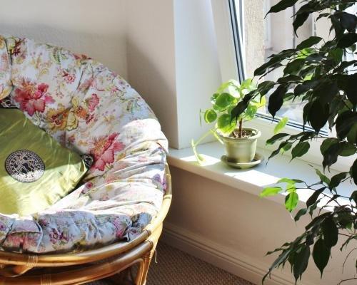 Tree House - фото 38