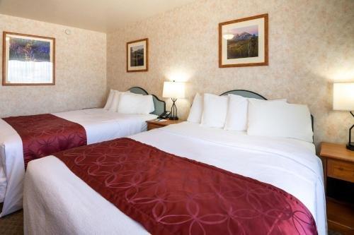 Photo of Swiss Alps Inn