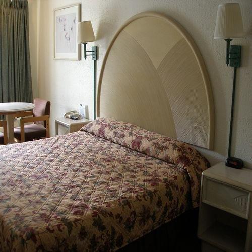 Photo of Scottish Inns Lake City