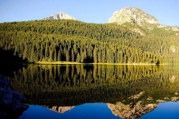 Apartments Harmony - фото 4