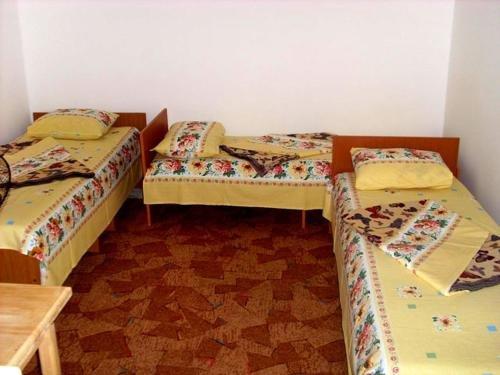 Guesthouse Novosolov - фото 12