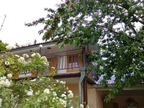 Guesthouse Novosolov - фото 23