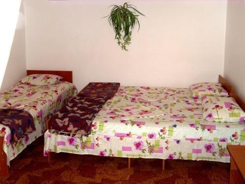 Guesthouse Novosolov - фото 5