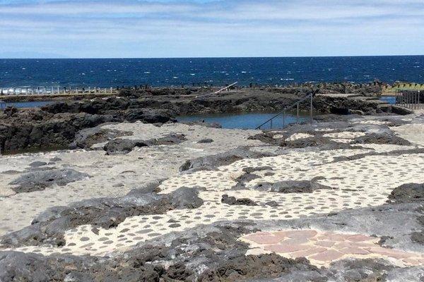 La Palmita de Canarias - фото 8