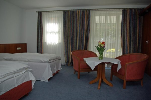 Hotel Alte Brucke - фото 1