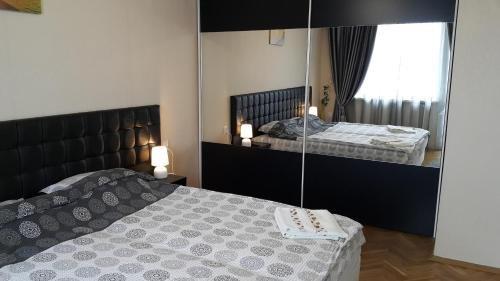 Apartment Plamen Delux - фото 1