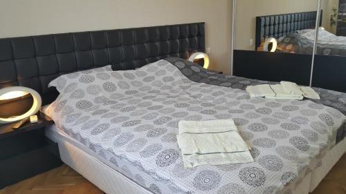 Apartment Plamen Delux - фото 3