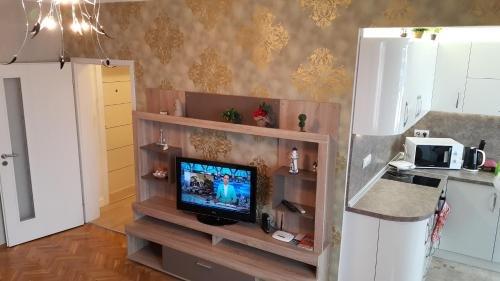Apartment Plamen Delux - фото 4