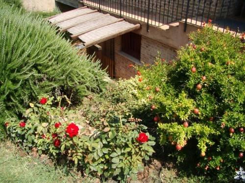 Villa Augusta - фото 13