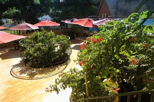 Guest House Equator - фото 21