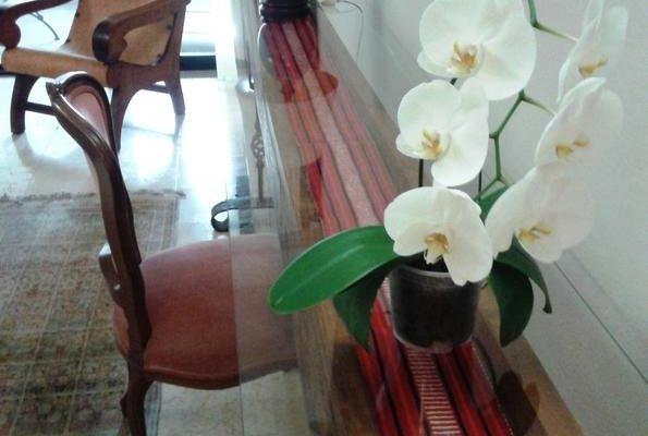 Orchidelirium Casa Hotel & Salud Estetica - фото 14