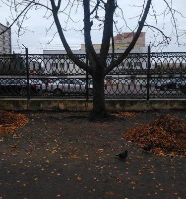 Apartment Shevchenko Boulevard - фото 2