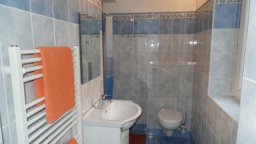 Apartments Rokytka - Praha - фото 15