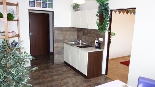 Apartments Rokytka - Praha - фото 19