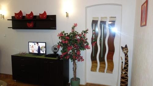 Apartments Rokytka - Praha - фото 7