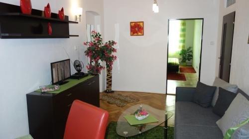 Apartments Rokytka - Praha - фото 8