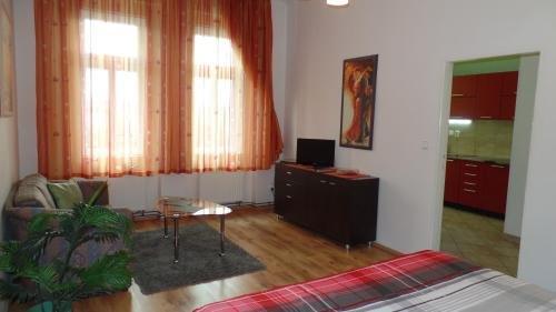 Apartments Rokytka - Praha - фото 9