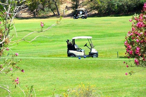Colonial Golf - фото 6