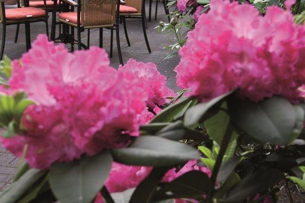 Best Western Park Siegen Hotel - фото 14