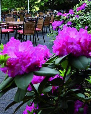 Best Western Park Siegen Hotel - фото 15