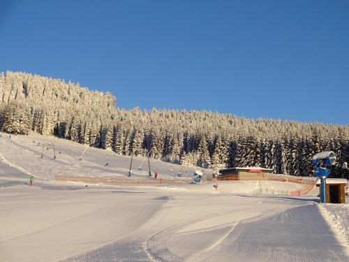 Ferienwohnung Schneemann - фото 4