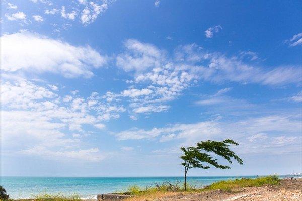 Amina Beach - фото 2