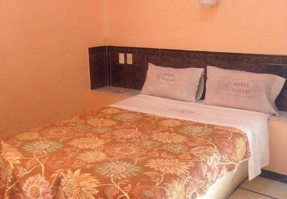 Hotel Gallo Rubio - фото 2
