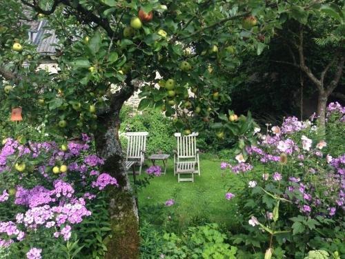 All Seasons Bed & Breakfast - фото 2