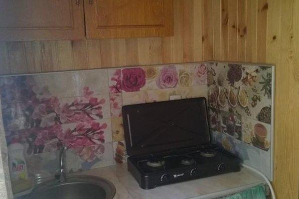 Guest house Tchagalidze - фото 8
