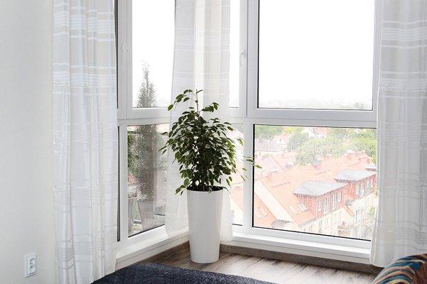 Livin Premium Apartments - фото 18