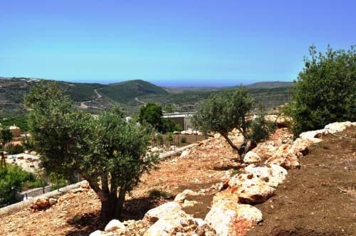 Shmulik Galilee - фото 18