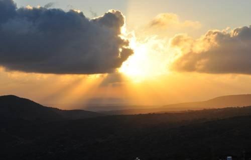 Shmulik Galilee - фото 19