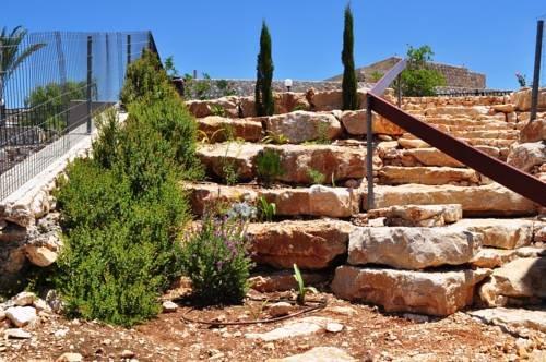 Shmulik Galilee - фото 23