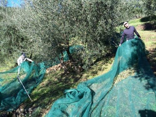 Agriturismo Terrarossa - фото 11