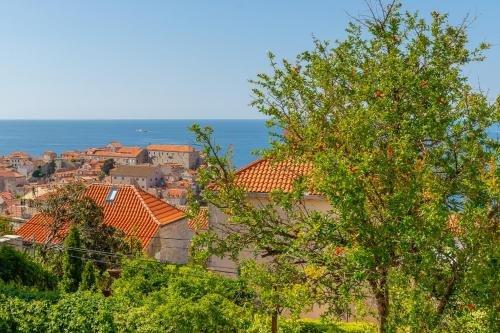 Apartment Canescens A18 - фото 21