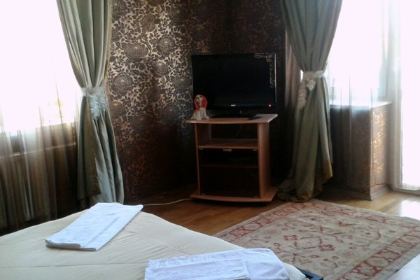 Мини-отель Вилис - фото 2