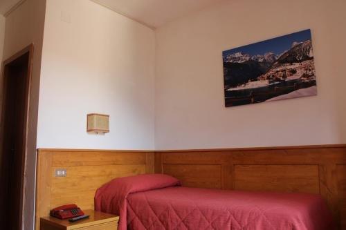 Hotel Paganella - фото 5