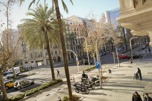 Kiwidestiny Barcelona City - фото 22