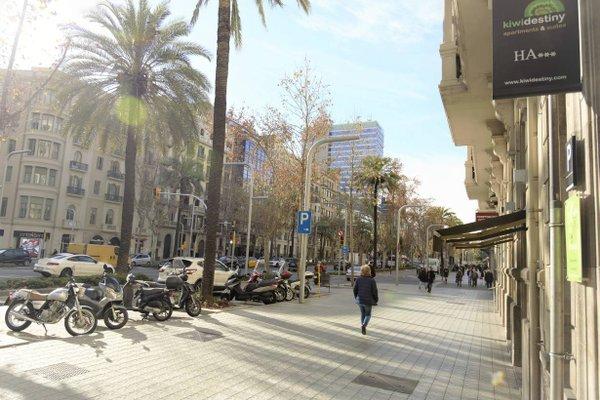 Kiwidestiny Barcelona City - фото 23