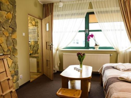 SPA Apartment Parkowy - фото 1