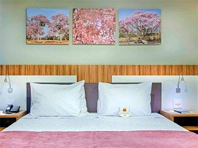 Comfort Hotel Confins, Лагоа-Санта