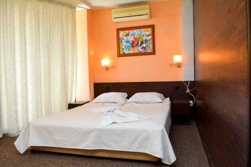 Отель Famyli Hotel Elitsa - фото 1