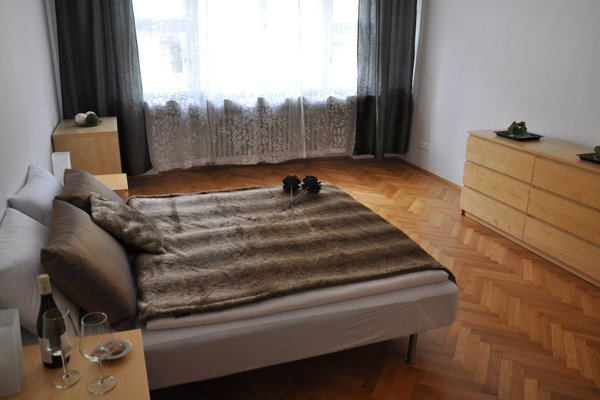 Metropolis Prague Apartments(Rezidence Veverkova) - фото 3