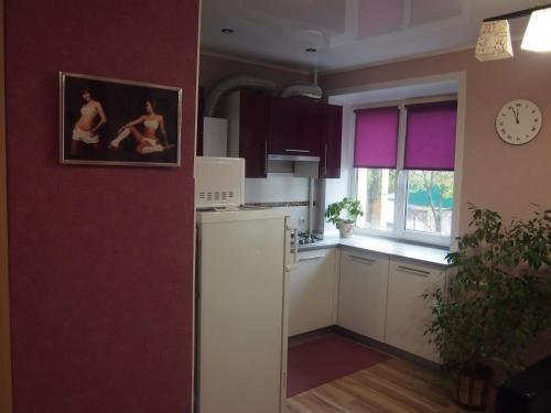Apartment Lenin - фото 4